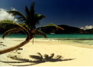 Sandy Spit East End of Jost Van Dyke Get there from St. Thomas USVI with Caribbean Blue Boat Charters