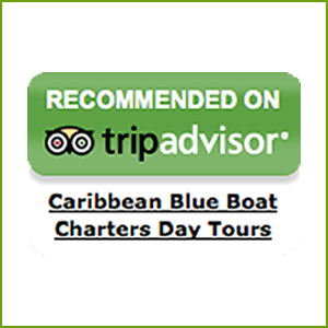 tripadvisor recommends Caribbean Blue Boat Charters Boat Rentals in St. Thomas USVI Caribbean